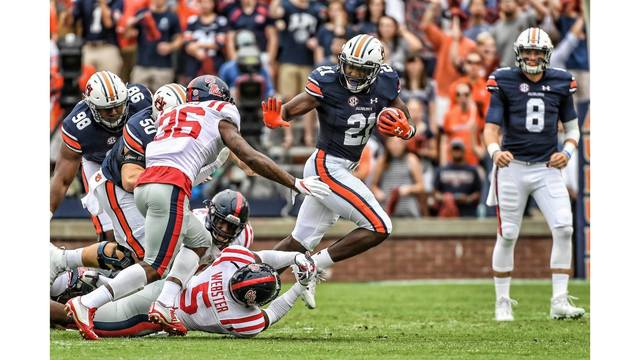 Auburn's Kerryon Johnson: 'I'll never count myself out'