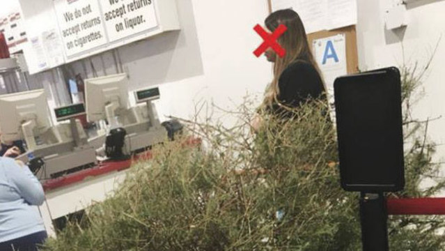 Woman returns 'dead' Christmas tree to Costco in Jan. for full refund