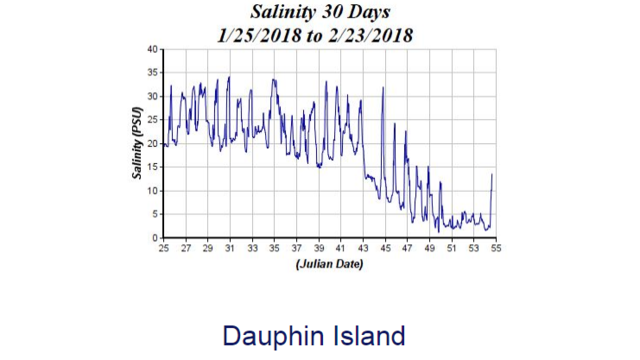 Bay Water Salinity...Or Lack Thereof