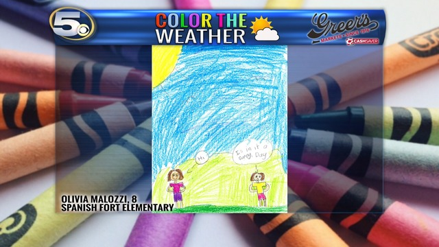 Color The Weather_Olivia Malozzi_1524230110610.png.jpg