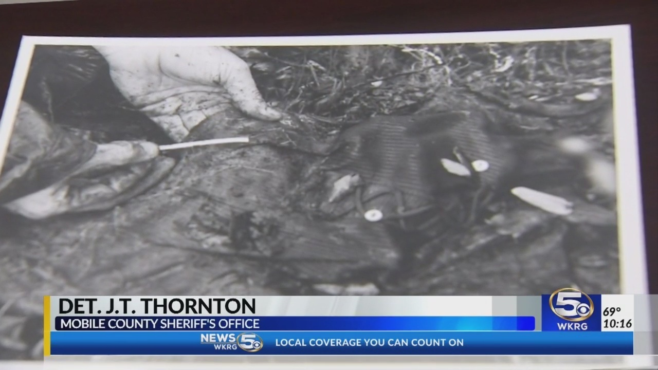 Investigators solve cold case after 41 years