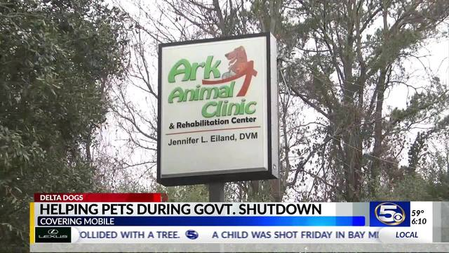 VIDEO: Delta Dogs/Ark Animal Clinic collecting pet food for families