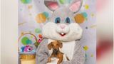 Americans to spend $18 billion on Easter