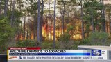 Large woods fire in Walton County 90 percent contained